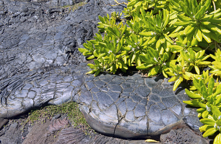 mottled: Hawaii mottled lava makes for cool background. Stock Photo