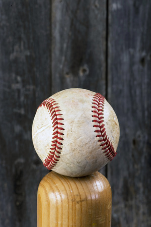 hardball: Baseball and wooden bat with room for your type.