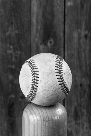 grain fields: Baseball and wooden bat in black and white with room for your type.