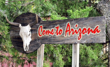 tuscon: Come to Arizona sign with cow skull.