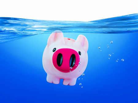 Pink piggy in the blue water. Stock Photo