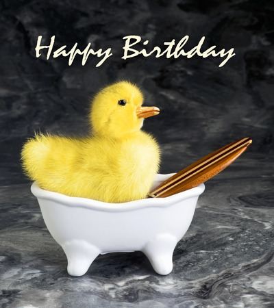 ducky: Happy Birthday with ducky in tub. Stock Photo