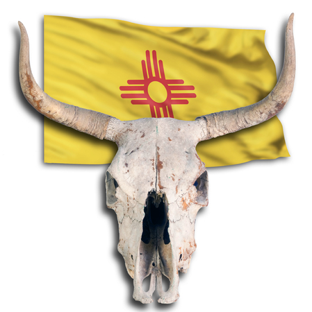 New Mexico flag and old cow skull. Stock Photo