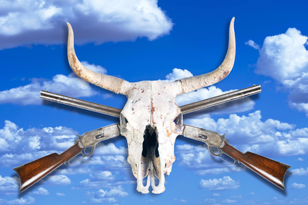 Antique cowboy lever action rifle and cow skull .