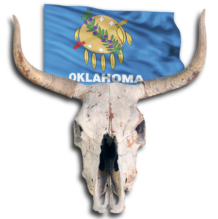 Oklahoma State flag and cow skull. Stock Photo