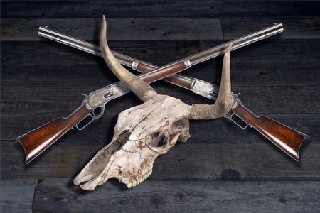 Antique cowboy lever action rifles and cow skulls. Stock Photo