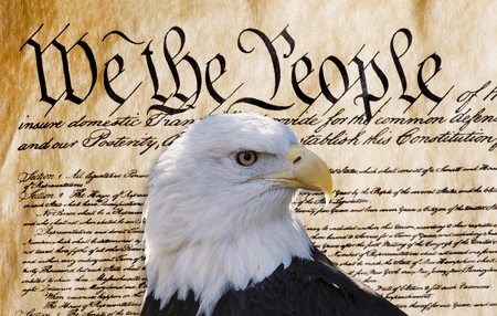 Constitution of America, We the People with American bald eagle. Фото со стока