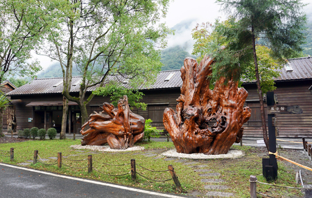 Wanrong, Taiwan - Dec.4,2018 - Lin Tian Cultural Museum in old Japanese logging town with giant Camphor trees.