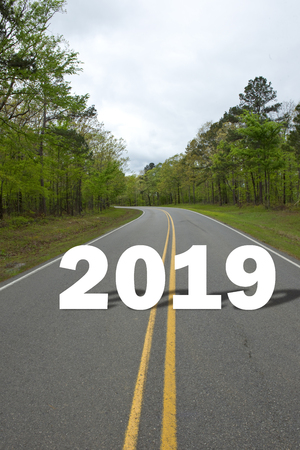 New Year of 2019 driving down the highway.