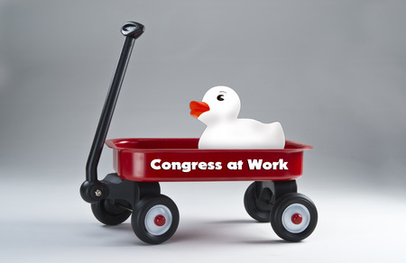 Congress at work with little white ducky in little red wagon.