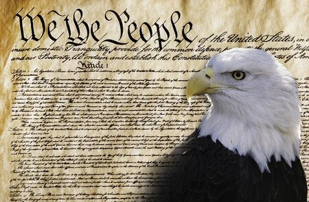 We the people with American bald eagle . Stock fotó