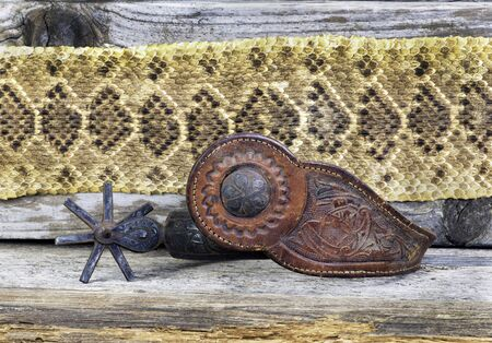 Antique Mexican spurs with rattlesnake skin background and room for your type.