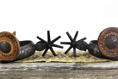 Close up of antique Mexican spurs with rattlesnake skin background and room for your type.