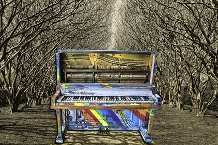 Colorful jazz piano in tree tunnel garden. Stockfoto