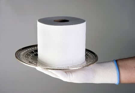 Last roll of toilet paper, more valuable than gold.
