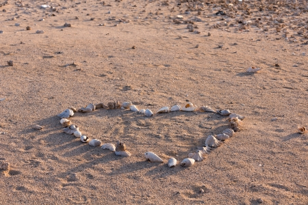Seashells forming a heart shape on beach photo
