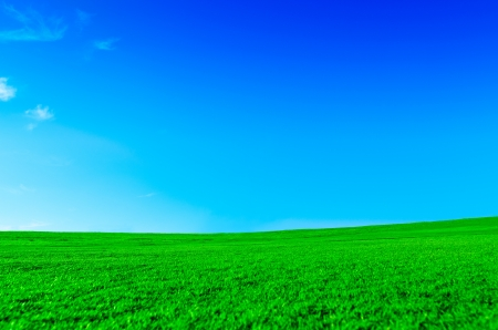 Serene green landscape photo
