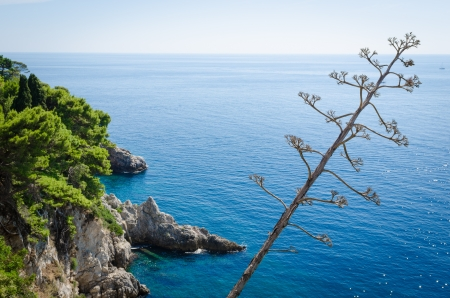 ragusa: View of the Adriatic sea from above with sunshine stars in the water