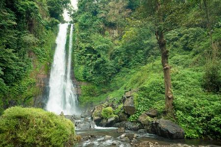 git: Beautiful tall waterfall deep in Bali jungle