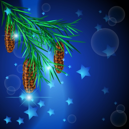 Fir twig with cones against dark blue background with stars Vector
