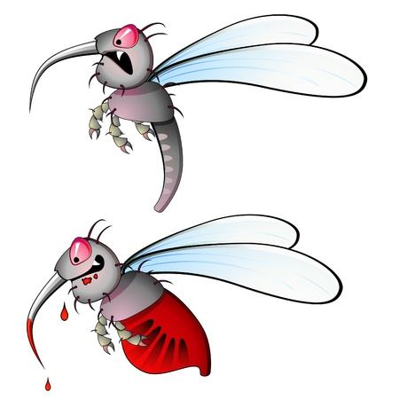 fly cartoon: Hungry mosquito and other one full with blood