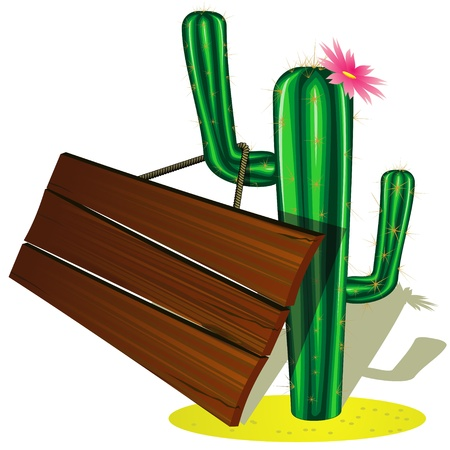 cactus flower: Green cactus with pink flower and wooden billboard