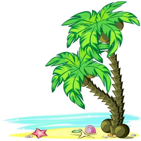 Twee palmbomen met kokosnoten op het strand Stock Illustratie