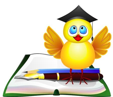 scholar: Chicken with graduating cap standing on open book Illustration