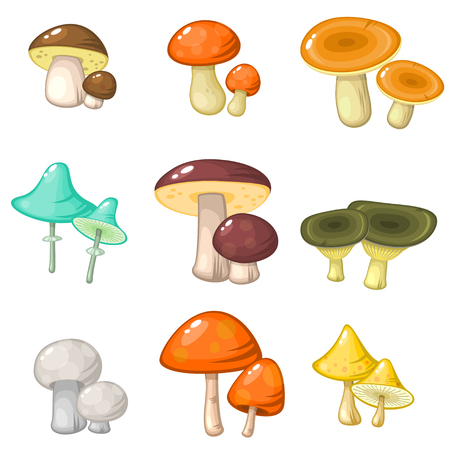 toadstool: Set of nine pairs of various forest mushrooms isolated over white