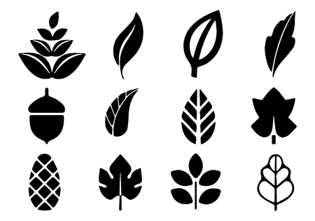 Types of leafs. Silhouette of autumn elements Vector illustration.