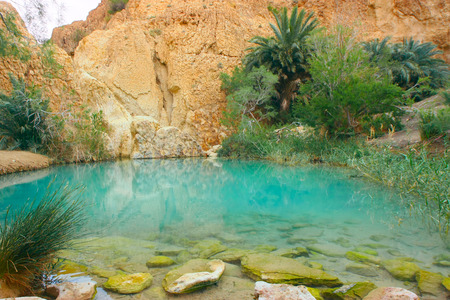 mountain oasis: A mountain oasis in Tunisia