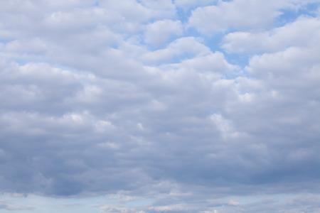 horizont: White cumulus in horizont sky