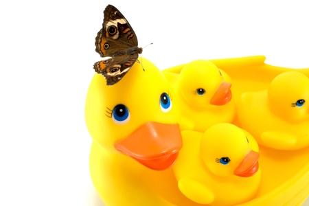 pato de hule: Los patos de goma con la mariposa aislada en blanco