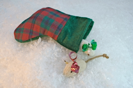 Small christmas stocking with cat nip mice on snow background