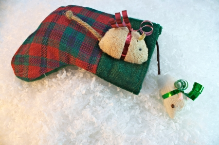 Two cat nip mice with stocking on snow background photo