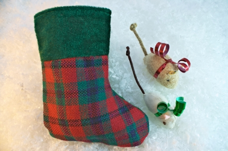 Christmas stocking and cat nip mice pet gift concept photo