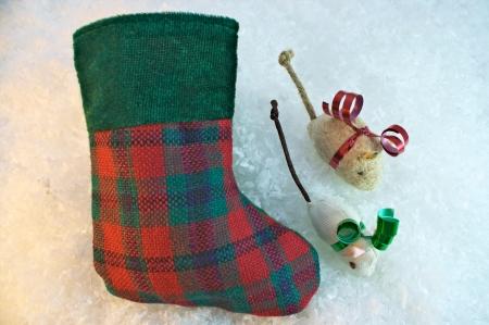 Christmas stocking and cat nip mice pet gift concept Zdjęcie Seryjne