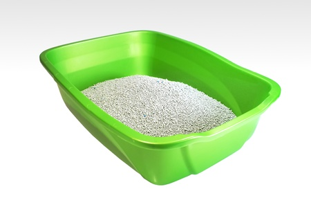 Clean litter box isolated on white background