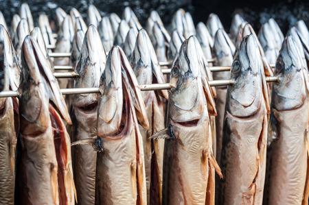Fresh mackerel ready to go in the smoke oven Stok Fotoğraf