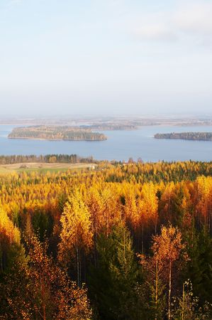 ki: Autumn landscape from V�is�l�nm�ki, Finland