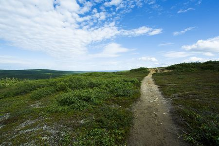 Natural reserve landscape from north of finland photo