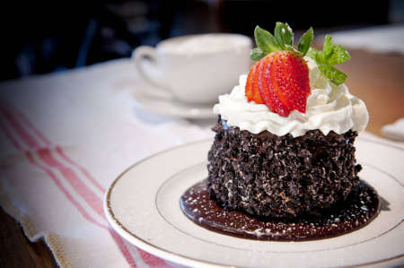 Delicate chocolate cake with whipped cream