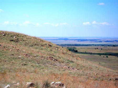 curvaceous: Curvaceous Hillside