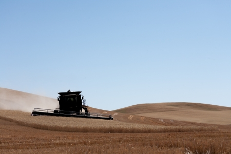 palouse: Wheat combine during harvest in Palouse, Washington Stock Photo
