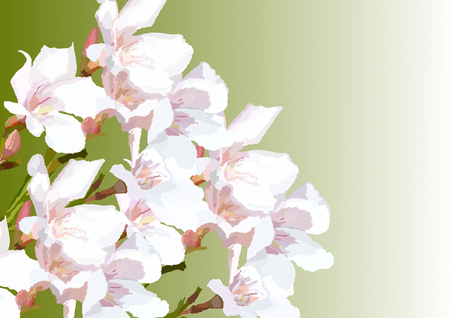 Painted Pink oleander flowers left on dark green gradient with a large copyspace on the right side Stock Photo