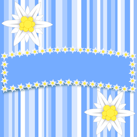 edged: Two large edelweiss flowers on light blue stripes with a large copy space edged with small edelweiss flowers in a square format