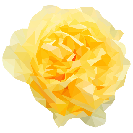 blossomed: Yellow bloomed rose shaped from triangles isolated on white