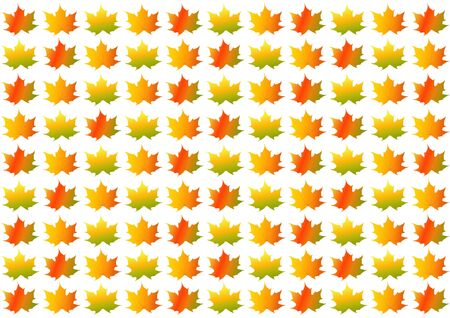 Colorful autumnfall leaves on white background in landscape format Imagens