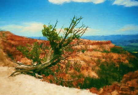 Digital painting - Old Tree at the rim in Bryce Canyon - Fine Art 写真素材