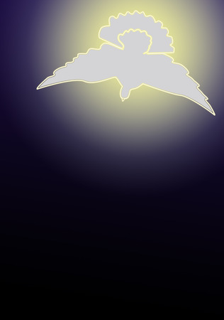 The dove as a symbol for the holy spirit